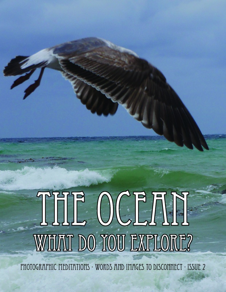 The Ocean - What Do You Explore?