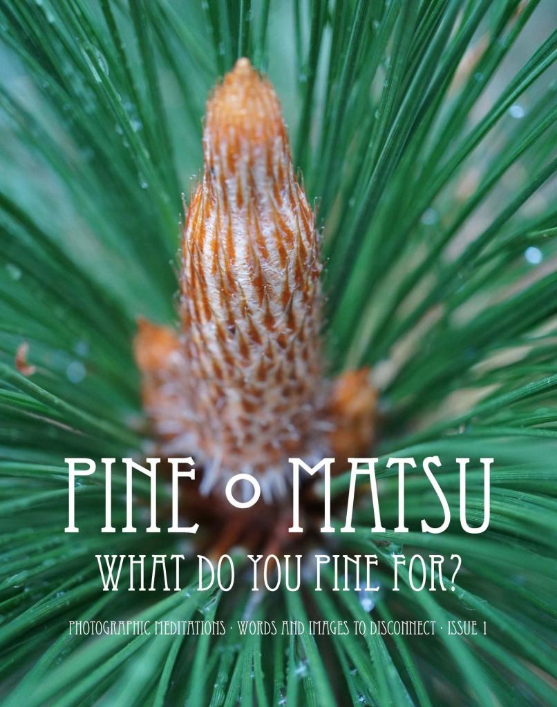 Pine Matsu - What Do You Pine For?