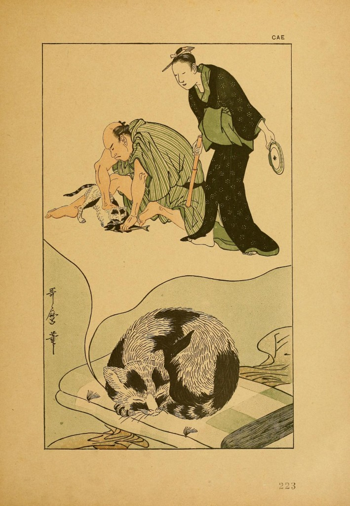 Cat Dreaming by Utamaro (Outamaro)