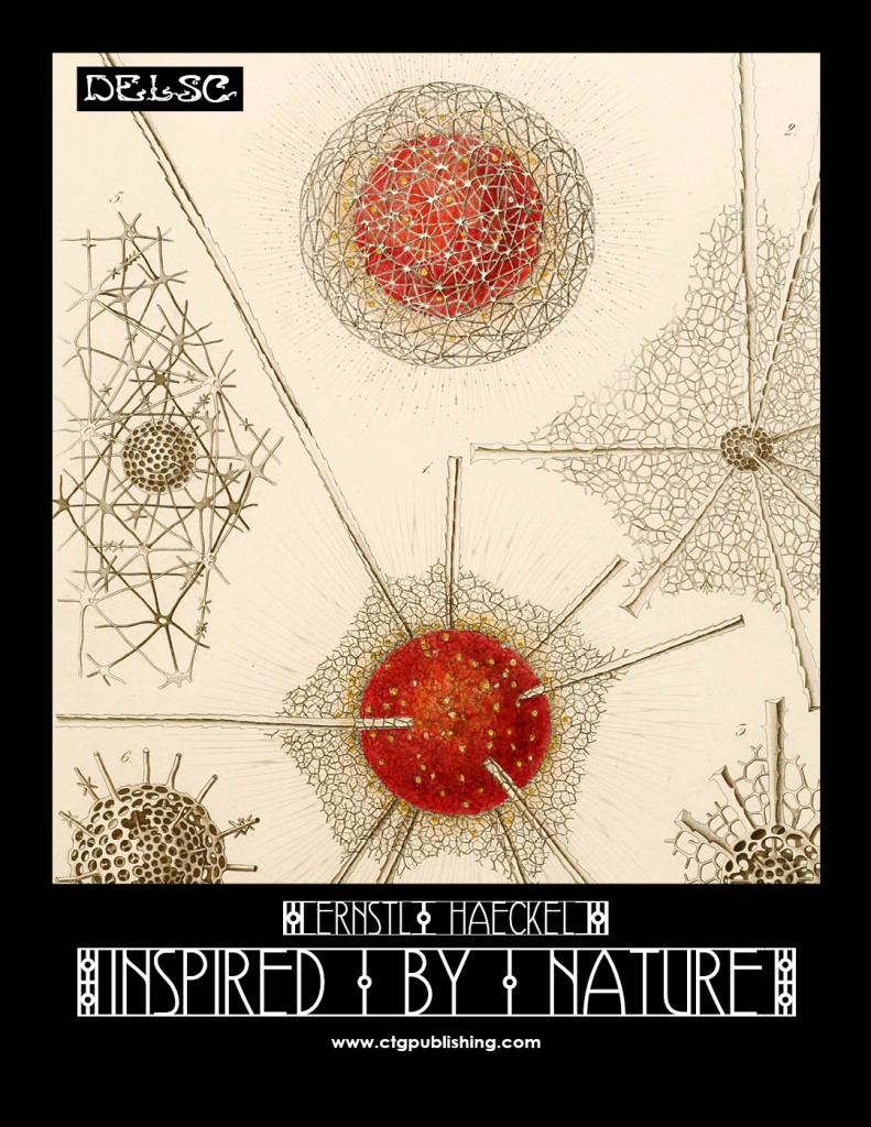 Ernst Haeckel Inspired by Nature from Delsc