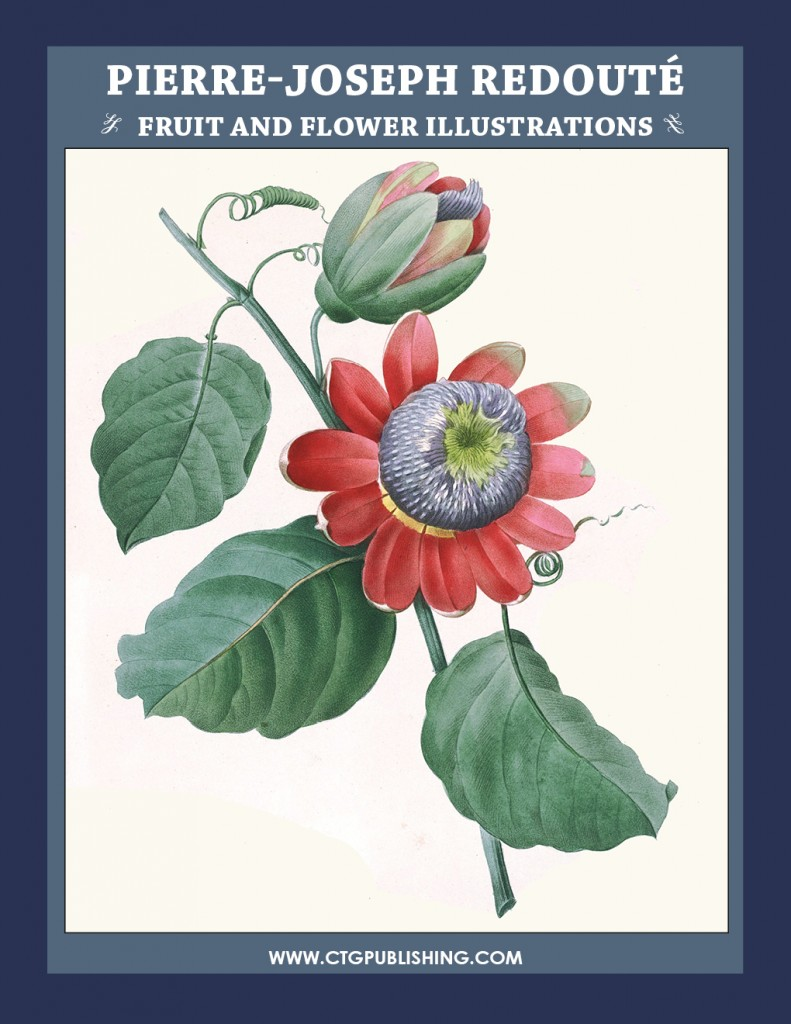 Pierre-Joseph Redouté Fruit and Flower Illustrations by CTG Publishing