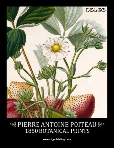 Poiteau Botanical Illustrations