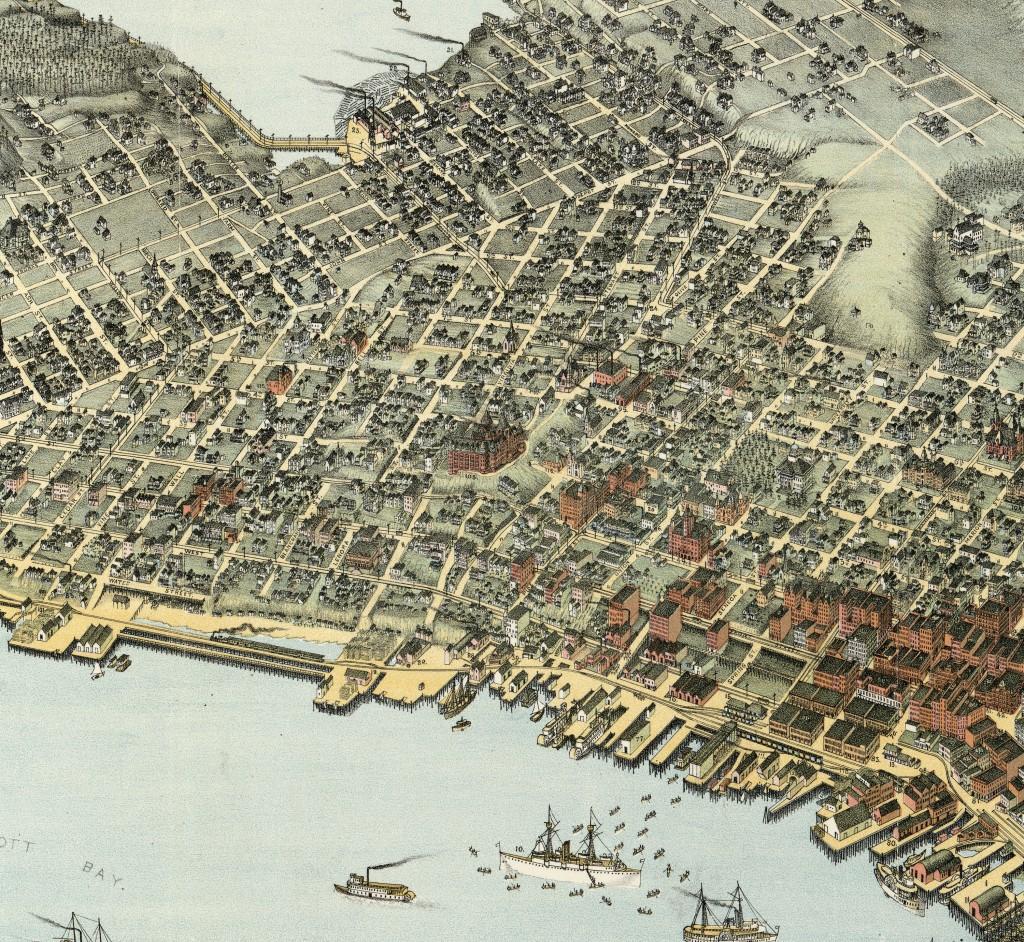 Seattle Antique Map 1891   After the Great Fire
