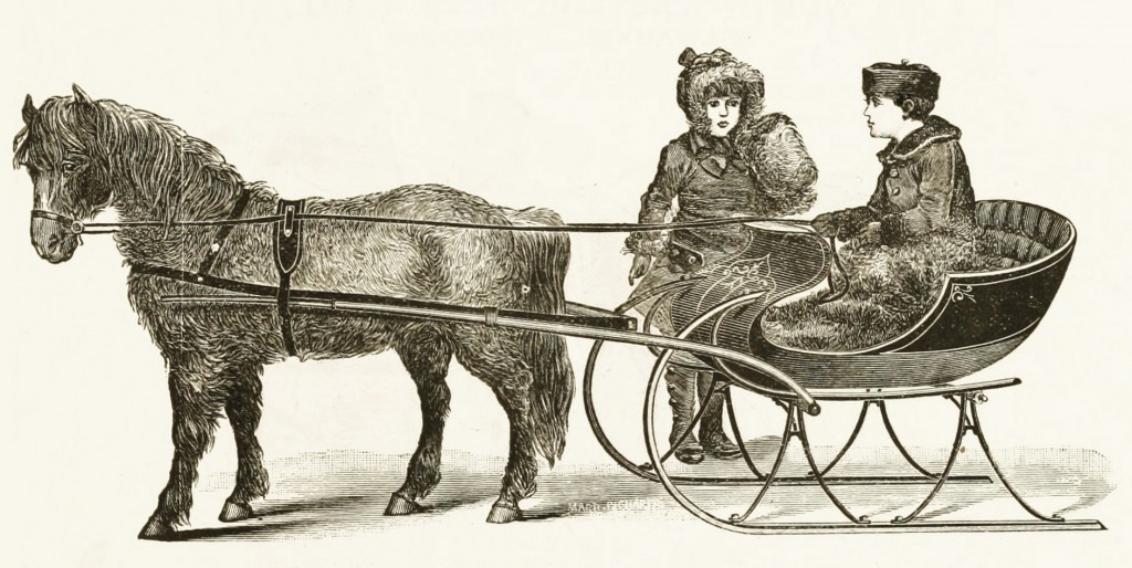 Northwestern Sleigh Co Shetland Pony Cutter Model circa 1889