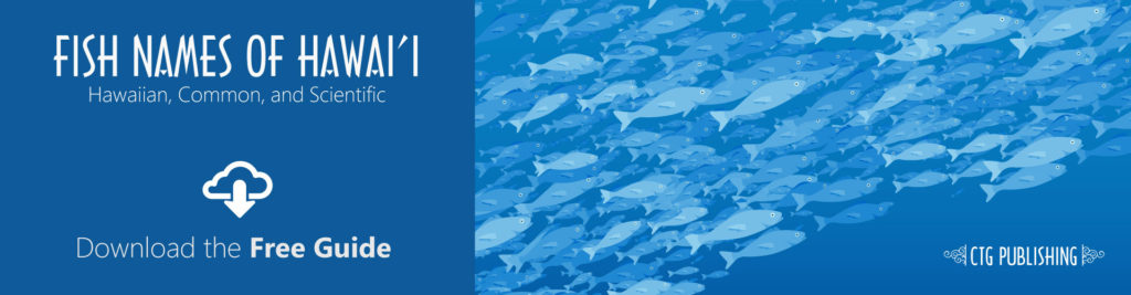 Hawaiian Fish Names Header Banner