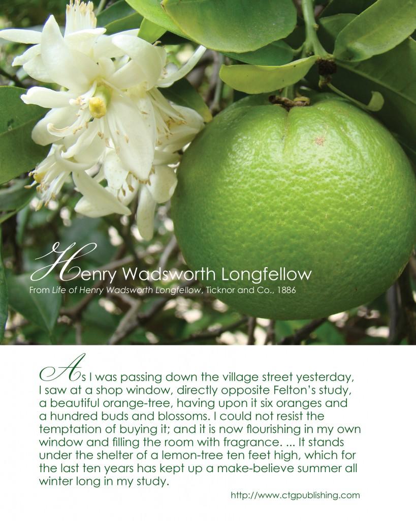 Henry Wadsworth Longfellow   Orange Tree Quote   Photo By CTG Publishing
