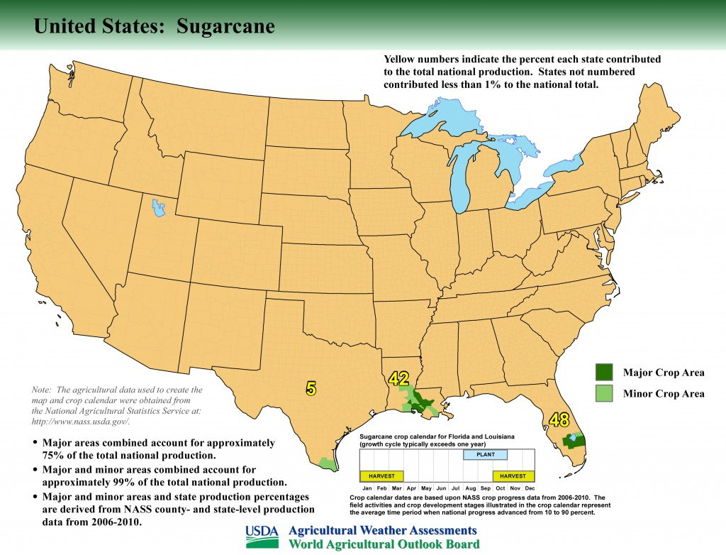 Where Is Sugar Grown in the United States