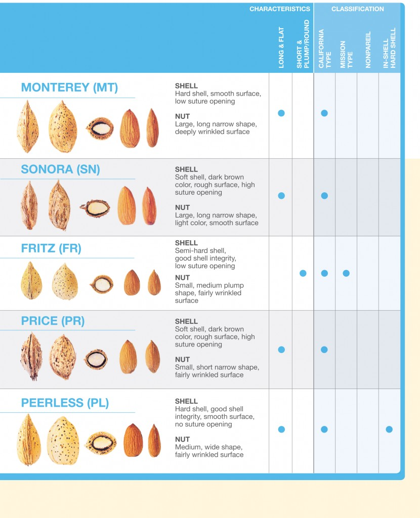 Types of California Almonds
