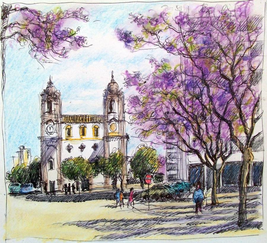 Sketch of Jacaranda in Bloom by Guy Moll