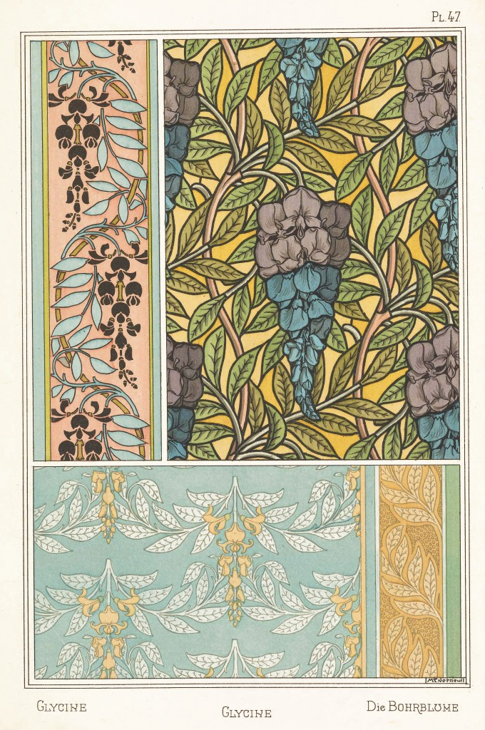 Maurice Pillard Verneuil Art Nouveau Illustration: Glycine - Bohrblume