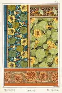 Maurice Pillard Verneuil Art Nouveau Illustration: Nasturtium - Capucine - Kapuzinerkreffe